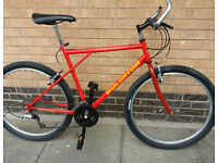 Raleigh Pulsator good condition (city centre)
