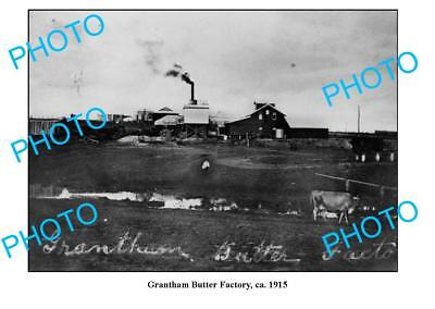 OLD LARGE PHOTO QLD, GRANTHAM DAIRY BUTTER FACTORY c1915 for sale  Shipping to Canada