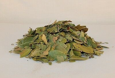Bearberry Uva Ursi 1 Lb Organic Botanical Smoking Healing Herb Native American