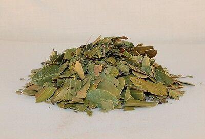 Bearberry Uva Ursi 1 Lb Organic Botanical Smoking Healing Herb Native American