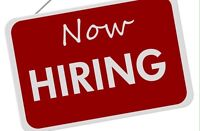 Part Time Commercial Cleaner Needed