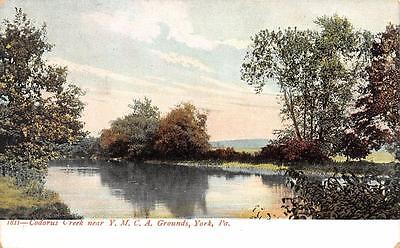 York  Pa  Pennsylvania     Codorus Creek   Ymca Grounds     C1900s Udb Postcard