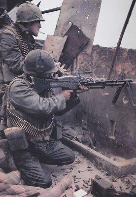 Vietnam War USMC Battle In City Limits Of Hue Amazing 8.5x11 Photo