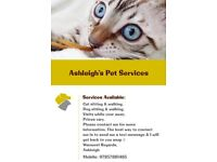 Ashleigh's Pet Services (Available Locally) cat dog&small animal pet sitter, sitting, walker/walking