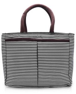 BRAND NEW Insulated Striped Lunch Bag