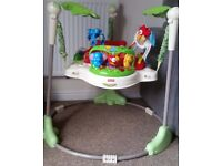 Rain Forrest jumperoo perfect order