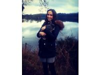Experienced Pet Sitter / Carer - All Animals Boarding, Sitting, Walking, Grooming