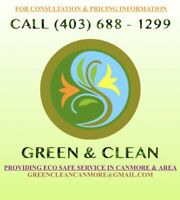 Lawn maintenance and painting.
