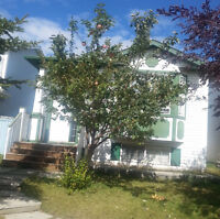 House for rent in Martindale NE Calgary