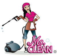 Cleaners-The Ms.Clean kind of clean