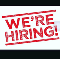 We are looking to add 2 to 3 people to our team