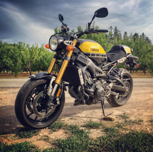 Looking for Yamaha XSR900