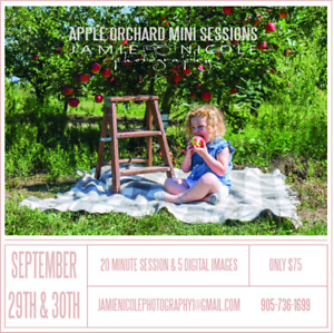Apple Orchard Mini Sessions