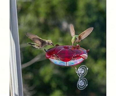 Droll Yankees RUBY SIPPER WINDOW HUMMINGBIRD FEEDER, Made in USA
