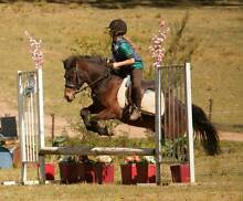 Horse Riding for all Ages Oakdale Wollondilly Area Preview