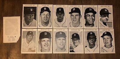 Vtg 1974 Detroit Tigers Team Picture Pack 12 B/W Photo Set Kaline Cash Horton