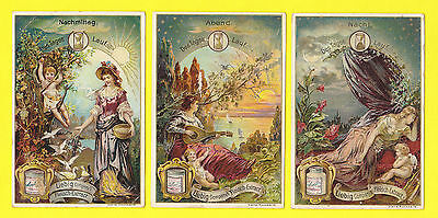 LIEBIG - RARE SET OF 6 CARDS - S  447  /  F  442  -  COURSE OF THE DAY  -  1895