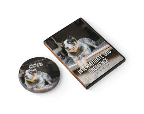 Intermediate Dog Obedience DVD by Leerburg