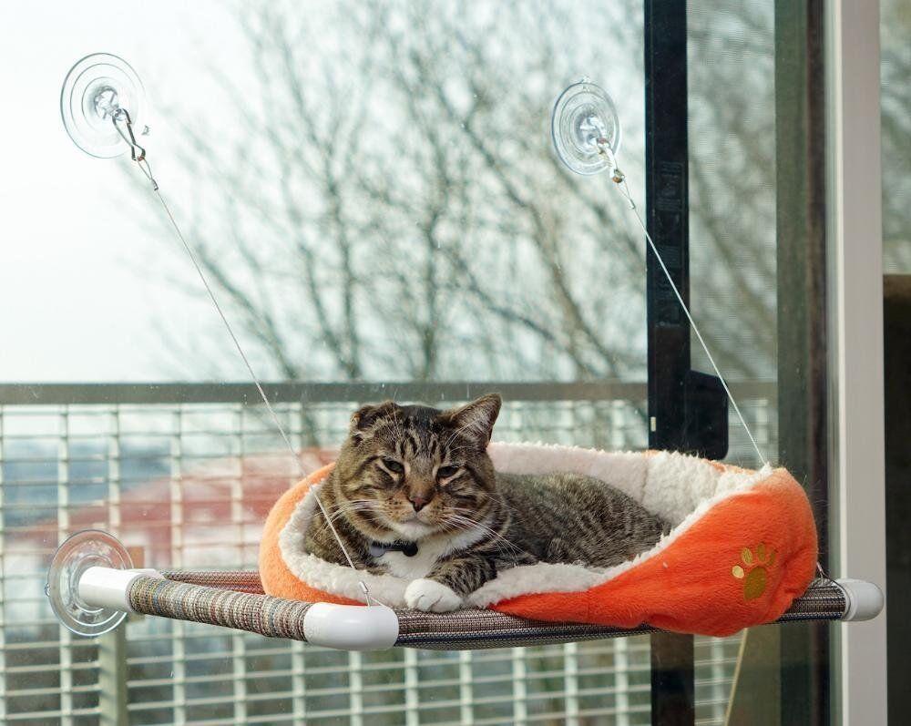 Cat Window Perch Seat Bed Hammock Original Kitty Cot No T...