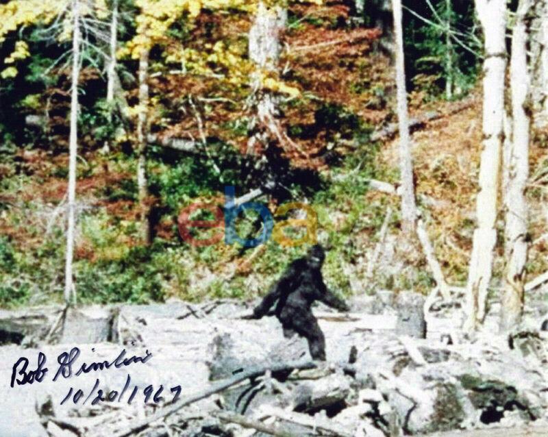 Bob Robert Gimlin BIGFOOT Patterson Gimlin Film Signed 8x10 Autographed Reprint