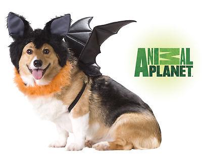 Bat Dog Costume Animal Planet