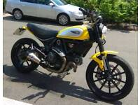 Ducati scrambler termi + extra