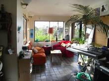 Huge bedroom plus large sunny studio with views to park and city Randwick Eastern Suburbs Preview