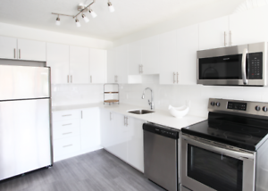 Newly Renovated 1 Bedroom ~ Receive a $500 Gift Card!