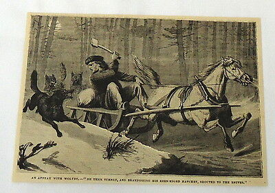 1880 magazine engraving ~ WOLVES ATTACKING MAN on Sled