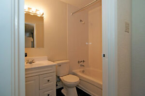 2 bedrooms available  for September $825-$895