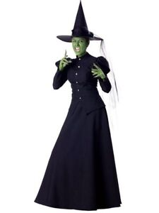 Wicked Witch Costume - Size Small ($150 retail!!)