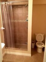 Basement is ideal for Male UOIT or Durham College Students