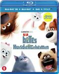 The Secret Life of Pets (3D + 2D + DVD) (Blu-ray)