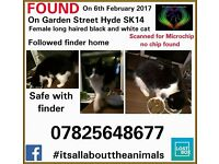 Black & White Female cat found in Hyde on 6th Feb 17.