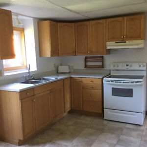 Kitchen cupboards / countertop / sink & faucets