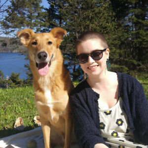 Affordable dog/puppy sitter - Days and overnights