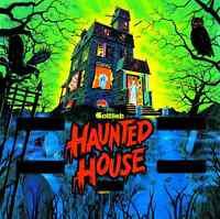 HAUNTED HOUSE or BLACK HOLE PINBALL MACHINE WANTED