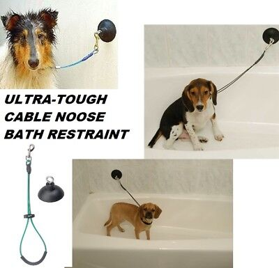 """Dog Cat Grooming""""HOLD EM""""Stay&Wash Bath RESTRAINT SUCTION CUP&LOOP Noose SYSTEM"""