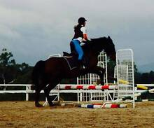 Horse Riding Instructor Warrandyte South Manningham Area Preview