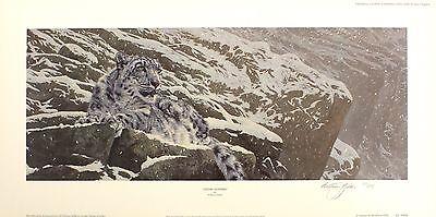 "ANTHONY GIBBS ""Snow Leopard"" big cat mountain SIGNED! SIZE:32cm x 65cm NEW RARE"