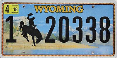 Wyoming  License Plated Original Nummernschild  USA  20338  ORIGINALBILD