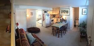 Spacious downtown 1 bd apt