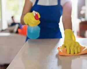 BEST HOME CLEANER  IN SUTHERLAND / ILLAWARRA REGION Grays Point Sutherland Area Preview