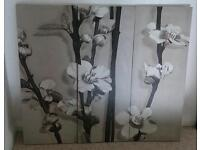 Canvases for sale