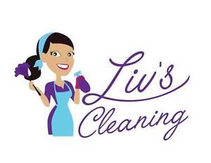 Liv's Cleaning Albion Park Shellharbour Area Preview
