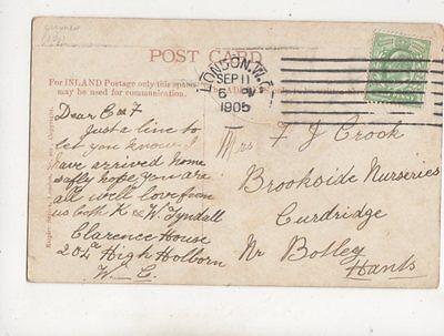 Mrs FJ Crook Brookside Nurseries Curdridge Botley 1905 400b