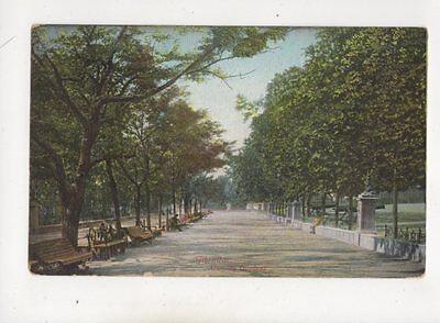 Gibraltar Alameda Gardens Vintage Postcard 432b