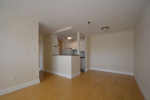 $1250 for a beautiful apartment just steps from all you'll need