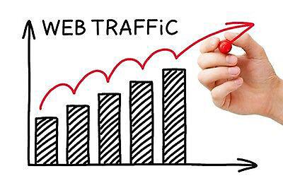 3 Months Real Traffic For 1 Website   100  Human   Seo   Alexa Safe   Analytics