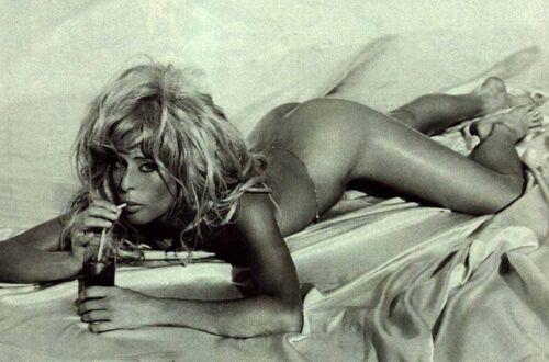 Farrah Fawcett Unsigned 8x12 Photo (101)